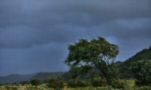 自動ドア台風発生時の対策・対処法|雨風に注意